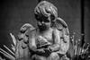 angel of the garden (Dotsy McCurly) Tags: angel wings bird statue yard bokeh monotone blackandwhite newjersey nj nikond750 28300mmf3556 7dwf