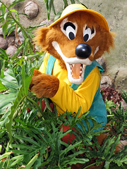Brer Fox (meeko_) Tags: brer fox brerfox characters disneycharacters disneysanimalkingdomentrance disneys animal kingdom disneysanimalkingdom themepark walt disney world waltdisneyworld florida