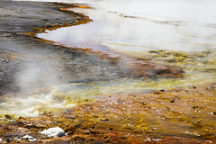 Alien Beach Resort_27A0580 (Alfred J. Lockwood Photography) Tags: alfredjlockwood nature landscape abstract excelsiorgeyser geothermalrunoff midwaygeyserbasin steam water microbialmat yellowstonenationalpark morning summer thermophiles extremophiles