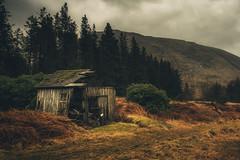 Somewhere in Glen Etive (der_peste) Tags: scotland glenetive glen coe glencoe highlands barn bicycle weed meadow trees hills sky dramatic mood sonya7ii sel1635z
