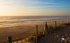 Plage Hossegor (Janick Norman Leroy) Tags: plage playa hossegor canon eos 1200d rebel t5 ete soleil sun sunset couché de france surf nature paysage