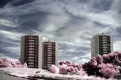 Wonderland (Lolo_) Tags: marseille infrared 35mm ir quartiers nord france infrarouge 715nm towers tours buildings immeubles residence gavotte peyret pink rose hlm