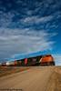 I see skies of blue (Going Trackside Photography) Tags: canadian national railway canada alberta lindbrook grain train blue sky country road crossing cn cnr cnrail rail railroad wainwright subdivision
