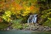 Autumn taste (Takeuchi@photo) Tags: autumn fall stream splash forest nature tamron2875mmf28 river rock stone nikond750