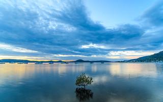 Daybreak Waterscape