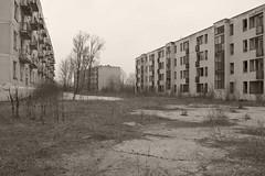 _MG_8411 (daniel.p.dezso) Tags: kiskunlacháza kiskunlacházi elhagyatott orosz szoviet laktanya abandoned russian soviet barrack urbex ruin military base militarybase