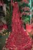 2017 09 09 - Diamante - (114) - Sagra del Peperoncino (Giovanni.Ciliberti) Tags: high iso highiso isoalti altiiso night notte sagra peperoncino peperoncini cascata rosso verde natura waterfall chili pepper
