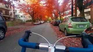 Fall Bike to Work Week