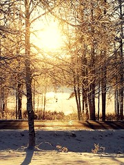 Tuesday morning (Susanna Valkeinen) Tags: winter morning snow home finland