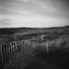 les dunes (l'imagerie poétique) Tags: limageriepoétique poeticimagery film believeinfilm filmisnotdead 120film mediumformat 6x6 bronicasqa 80mmf28 kodaktrix400 selfdeveloped istillshootfilm grainisgood