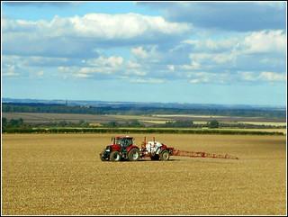 After Harvest Time ..