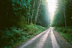 Washington (Gabe Scalise) Tags: 35mm gabe scalise film nikon f3 hp f3hp nikkor 50mm 14 pacific northwest travel mountains portra 400 kodak analog