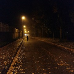 Herbst....por fin! #InspiracionBdF34 (A.Ayuso) Tags: streetshot strasse fotografiadistrada strase streetphotography thewaytothestreets streetphotgraphy strasenfotografie nocturna callejeros candid callejeando herbst otoño tremp lleida españa lluvia autumn views night bq android