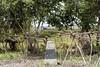 Programa de Erradicação da Oncocercose nas Américas - Terras Yanomami (Secretaria Especial de Saúde Indígena (Sesai)) Tags: outubro 2017 oncocercose erradicação dseiyanomami indígenas demarcação placa terraindígena pólobasesurucucu yanomami roraima