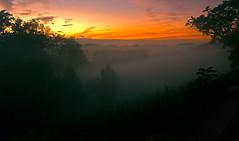 Fog at Glenwood 2 IMG_2556 (ForestPath) Tags: fog mist rising night sunset valley glenwoodgardens myfavoritepark thisisthevalleyiliveiniliveonahilljustthishighontheothersideofthevalleytotheleft october ithadrainedforthefirsttimeinacoupleofweeks coolevening glow trees dark cincinnati ohio