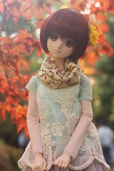 Autumn leafs (MarloesK) Tags: autumn dollfie dream sister mmd ddh10 custom momo outside