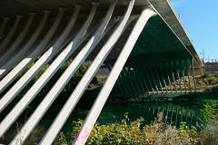 Montpellier - Pont d'accès au Quartier de Port Marianne (Le.Patou) Tags: montpellier bridge pont modern graphic urban urbanisme city cité cities cityscape reflexions