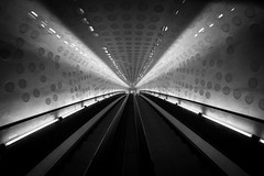 Ground control to ... / journey to the center of light (Özgür Gürgey) Tags: 12mm 2017 bw d750 elbphilharmonie hafencity hamburg nikon samyang architecture escalator fisheye grainy lights lines tunnel