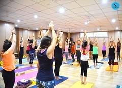 Hatha Yoga most valuable inheritance of the present (AYM Yoga School India) Tags: hathayoga yoga styles training education indoor classes students people studio centre health fitness motivation yogi yogini life guide yogaeverywhere yogaeverydamnday yogaeveryday aym india love peace