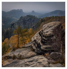 autumn rocks! (juhwie.foto - PROJECT: LEIDENSCHAFT-LICH-T) Tags: autumn fall rocks elbsandsteingebirge sächsische schweiz herbst carolafelsen landscape landscapephotography trees square nature beautifulgermany pentax pentaxart ricohimaging k1 1530 ngc