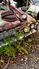 20171021_150901 v2 (collations) Tags: ontario mcleansautowreckers autowreckers wreckers automobiles autos abandoned rockwood derelict junkyards autograveyards carcemeteries