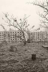 _MG_8292 (daniel.p.dezso) Tags: kiskunlacháza kiskunlacházi elhagyatott orosz szoviet laktanya abandoned russian soviet barrack urbex ruin rooftop reclaim