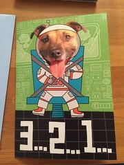 Dog astronaut birthday card (splinky9000) Tags: my happy birthday colin clark 92217 september 22nd 2017 kingston ontario gifts presents card 18th dog astronaut blast off rocket ship papa grandpa