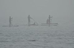 Lost - Palavas (Marc ALMECIJA) Tags: eau mer sea water sport nautique stand up paddle fog brouillard amateur sony rx10m3 outside outdoor