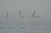 Lost - Palavas (Marc ALMECIJA) Tags: eau mer sea water sport nautique stand up paddle fog brouillard amateur sony rx10m3 outside outdoor