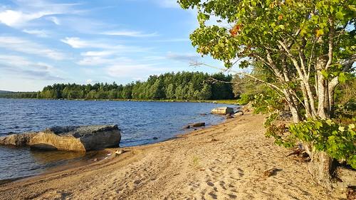 Junior Lake beach - www.wildfoxcabins.com