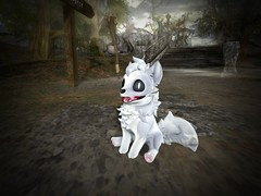 Hallowpup (sanctussinful) Tags: secondlife krankhaus hallowpup halloween furry wolf husky undead skeleton haunted photography