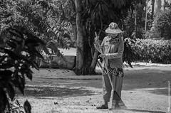 2014_Thailand_1539.jpg (TimFalk73) Tags: ausrüstung asia asien frühling jahreszeiten kameragehäuse locations nikond7000 orte parcscastlesabbeyschurches parksschlösserklosterkirchen park phuket sonnemondsterne sonne tempel thailand camerabody equipment seasons spring sun sunmoonstars