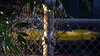 Rusty Edge (Theen ...) Tags: adelaide bins broken cyclone evening fence fencepost garbage green leaves light long low lumix recycle rusty sun theen torrensvilleprimaryschool