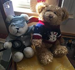 Elementary, My Dear Watson! (BKHagar *Kim*) Tags: bkhagar bear bears htbt teddybeartuesday teddy teddies friends sherlock holmes sherlockholmes watson toys animals stuffedanimals