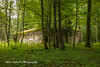 Bunkers at Wolf's Lair, Poland (Anna Calvert Photography) Tags: poland polska forest trees nature landscape wolf'slair hitlers lair nazi bunkers secondworldwar german gierloz ketrzyn