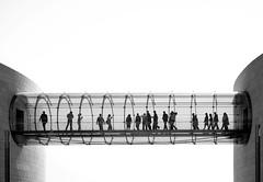 Ants (ThorstenKoch) Tags: streetphotography street strasse stadt schatten shadow silhouette summer sun sonne schwarzweiss sky ants blackwhite bnw art architektur architecture pov photography people picture photographer pattern portugal lines linien lissabon lisboa lisbon thorstenkoch fujifilm fuji xt10