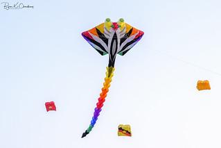 Kites 2 ...