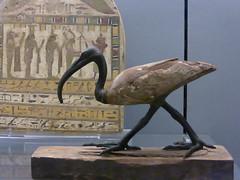 Fitzwilliam Museum, Cambridge (carolyngifford) Tags: fitzwilliammuseum cambridge sculpture ancientegypt ibis thoth