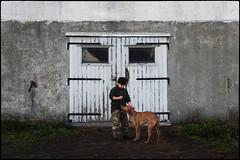 Portrait of Friends Connecting (Eline Lyng) Tags: barn farm norway countryside boy child pet dog animal people peopleandanimals portrait vizsla hungarianvizsla leica sl leicasl noctilux095 095 50mm silverefex