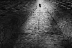 ...themusician... (*ines_maria) Tags: street man walk lonsome searching blackandwhite mono monochrome urban urbanart light hss