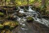 Stepping stones (david_allott) Tags: 1635mmf4 autumn fall hepworth landscape mortonwood fallenleaves steppingstones water waterfalls