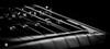 DSCF4490 (bc-schulte) Tags: xt20 fujinon fujifilm 1650mm bw nahlinse 4 blackwhite gitarre guitar saiten strings macro makro closeup epiphone ultra iii probucker