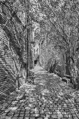 Liège (landrebeatrice) Tags: blackandwhite noiretblanc paysage ubain