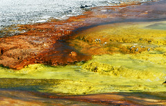 Grand Prismatic Spring (robmcrorie) Tags: grand prismatic spring yellowstone park wyoming yellow orange sulphur extremophile bacteria mat nikon d7500 200500 ed vr