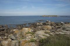 Sur les rochers * (Titole) Tags: batz iledebatz titole nicolefaton man rocks scape seascape sea