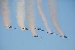 Breitling Jet Team (eodin1) Tags: aero breitling avignon avions albatros patrouille meeting