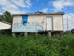 (gordon gekkoh) Tags: wyse d30 neworleans graffiti