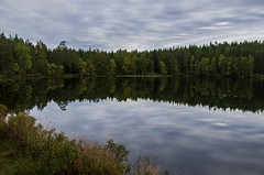 reflections (Stefano Rugolo) Tags: stefanorugolo pentax k5 smcpentaxda1855mmf3556alwr lake reflections nature landscape sky water hälsingland sweden sverige vatten tjärn trees skog träd natur