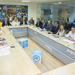 Comité de Dirección Autonómico, 28 de septiembre de 2017 thumbnail