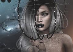 Gravity (Arwen Clarity) Tags: avi avatar mesh life secondlife second sl 2ndlife people lelutka maitreya shadows fantasy prycehalloweenchallenge space helmet